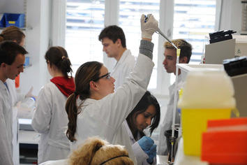 In the laboratory of the Institute of Chemistry and Biochemistry