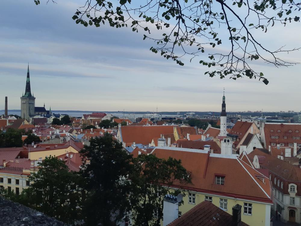 Panorama view of Tallinn's historic city center.