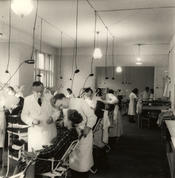 1949 – Dental students practicing in the treatment room of the dental clinic during the hands-on part of their training.