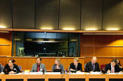 Panel discussion on the European identity in the European Parliament