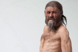 160 cm groß soll Ötzi gewesen sein, dessen 5300 Jahre alte Mumie 1991 in den Ötztaler Alpen entdeckt wurde. Die Körperhöhe von vorgeschichtlichen Menschen lässt sich anhand von Langknochen berechnen.