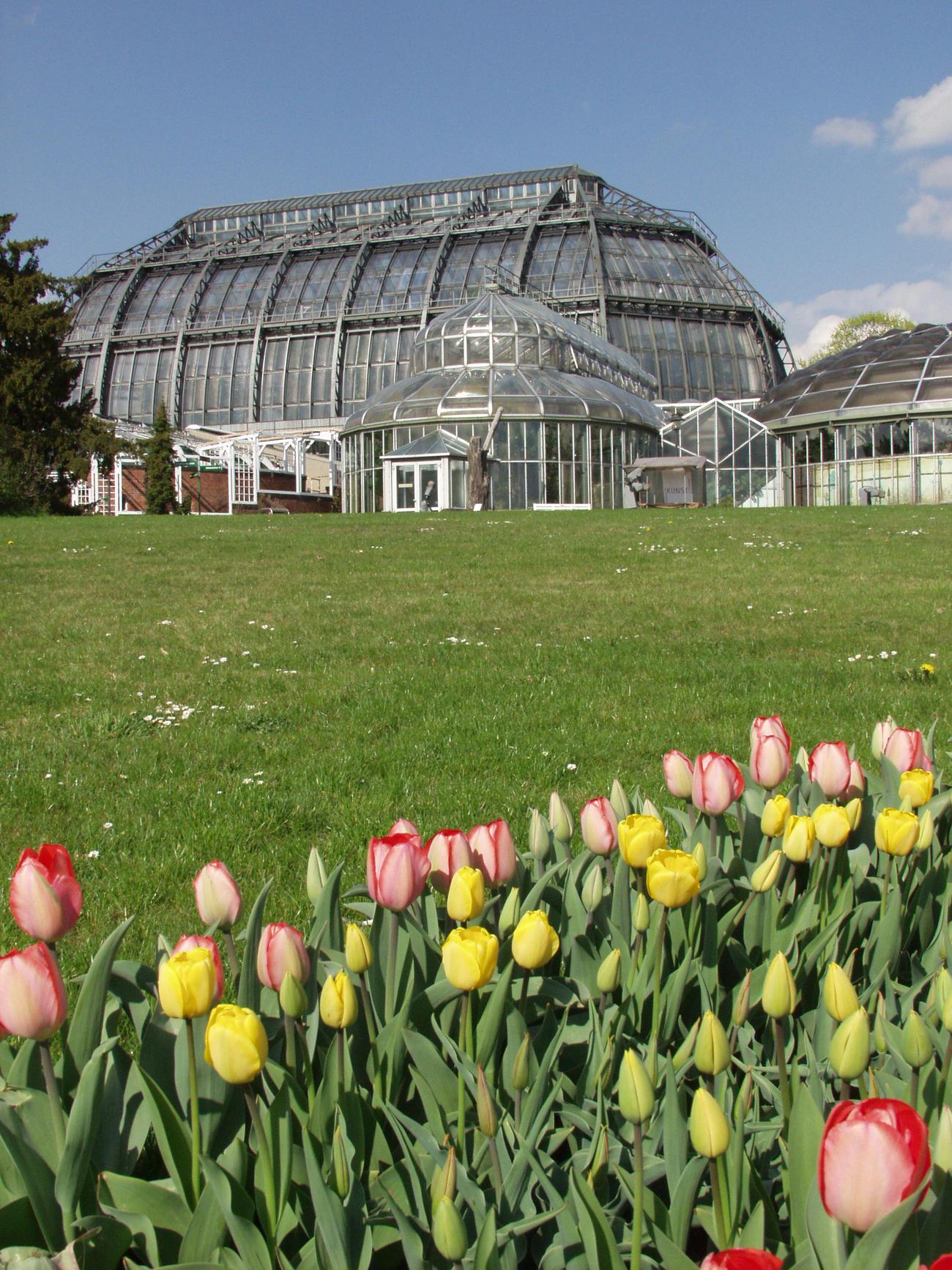 Botanischer Garten Berlin Eintritt