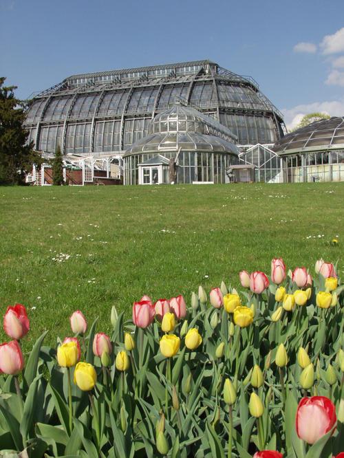 Botanischer Garten / Botanisches Museum • FUndament