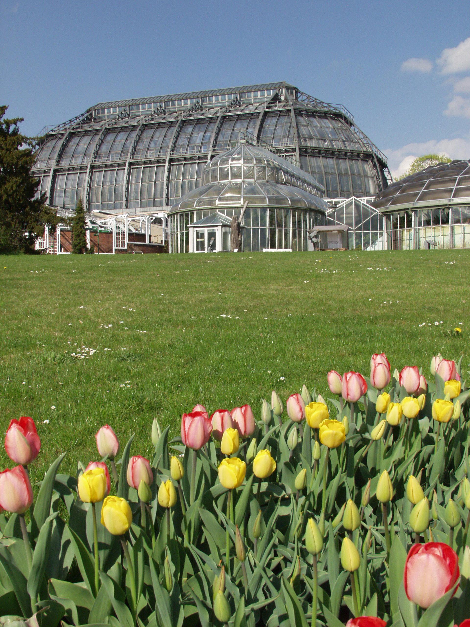 Botanischer Garten Botanisches Museum Fundament Gesundheit