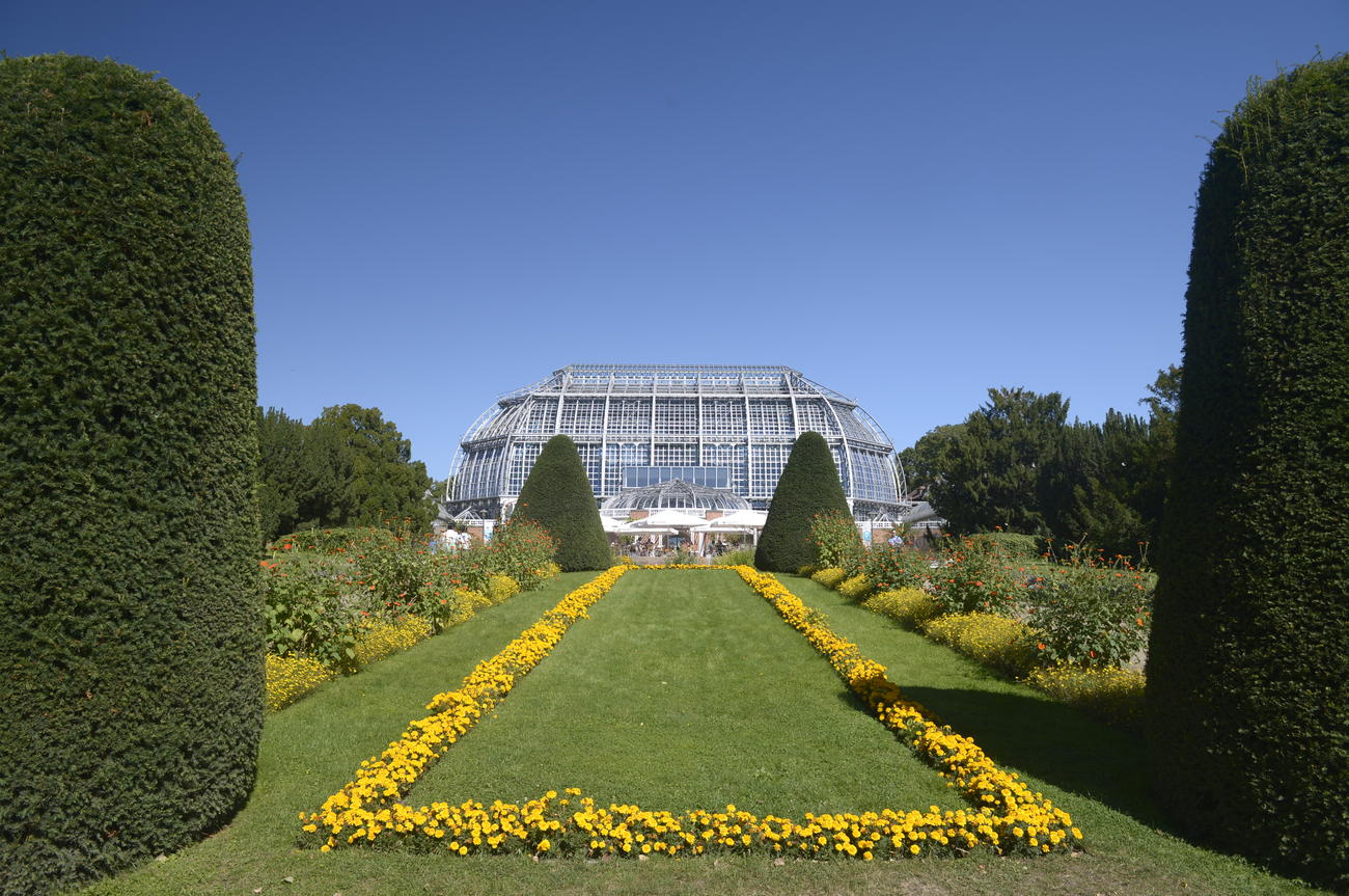 das groe tropenhaus ist der architektonische hhepunkt des botanischen gartens - Fu Garden