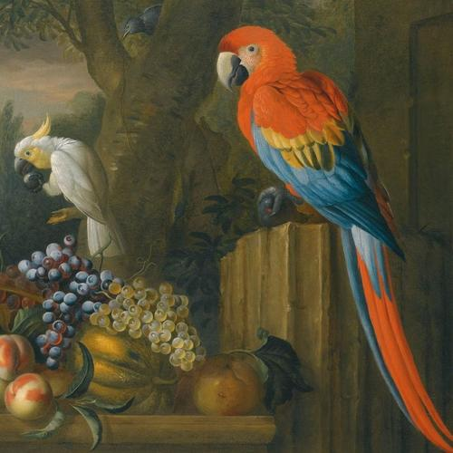 , A Still Life With Fruit, Parrots And a Cockatoo