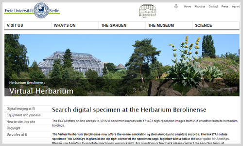Virtuelles Herbarium (Screenshot)